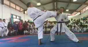 Tingkatkan Kedisiplinan Siswa, Pemerintah Lutim Luncuran Program Karatedo Untuk Sekolah