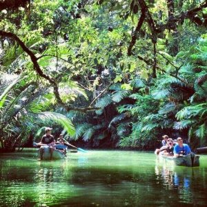Masyarakat 'Balas Dendam' Setelah Covid-19, HIPMI Industri Pariwisata Harus Dipromosikan Sekarang