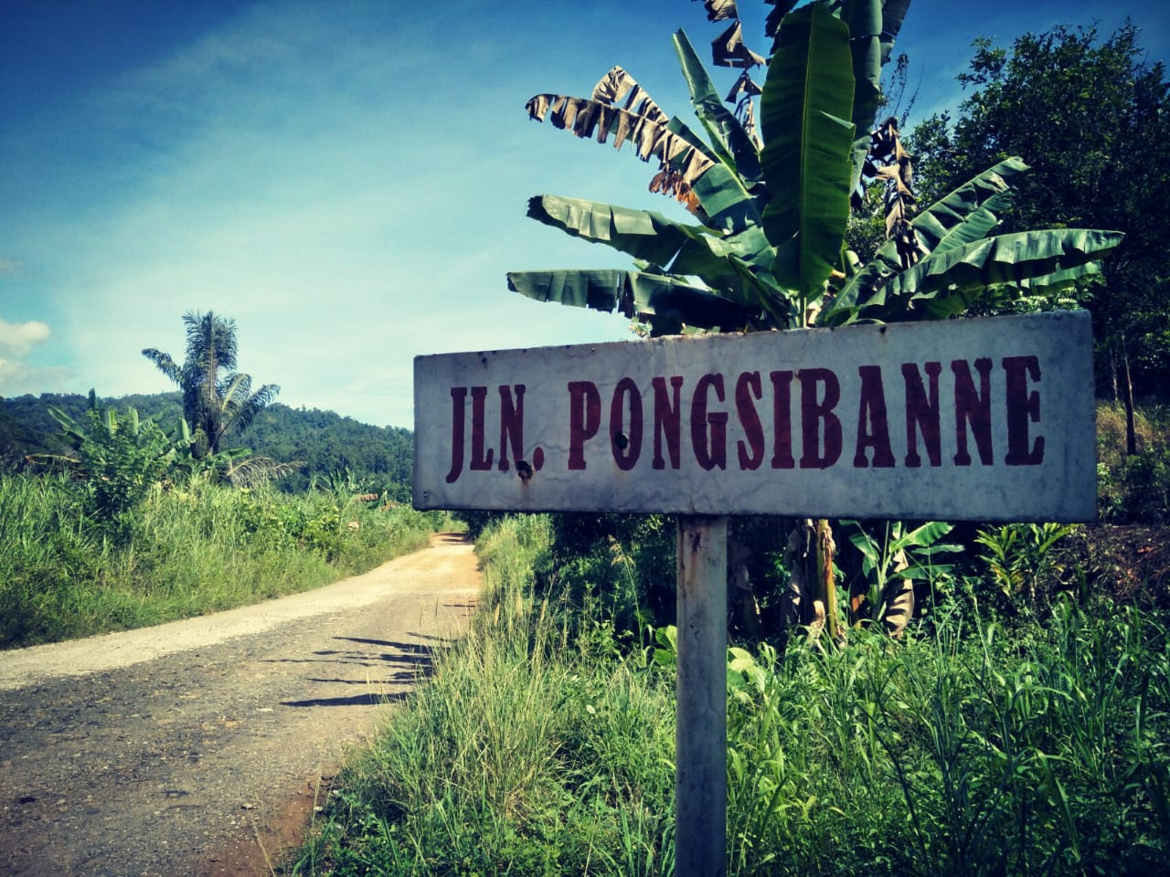PT Wika Hadir di Balambano, Mujur Terkait Tenaga Kerja Prioritaskan Masyarakat Desa Balambano