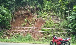 Bahaya, Jalan Raya Sorowako-Malili Rawan Longsor